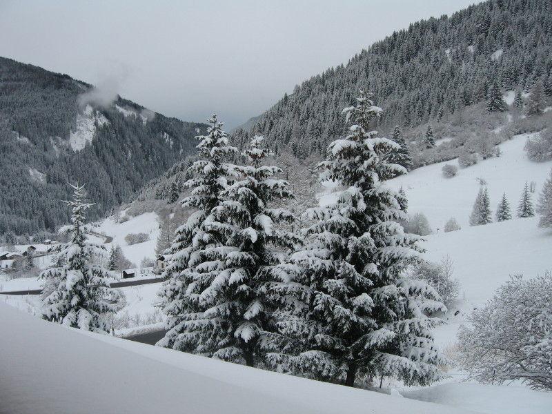 Ausblick aus der Ferienunterkunft Mietobjekt Appartement 66408 Predazzo