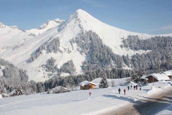Ausblick von der Terrasse Mietobjekt Chalet 2379 Praz de Lys Sommand