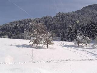 Ausblick von der Terrasse Mietobjekt Chalet 27502 Morzine