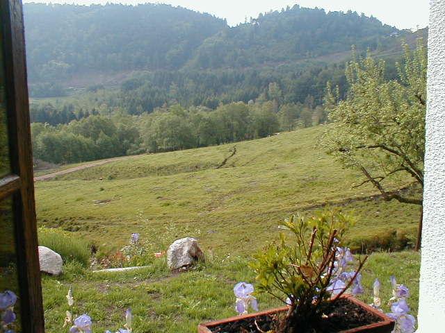 Ausblick aus der Ferienunterkunft Mietobjekt Chalet 4531 La Bresse Hohneck
