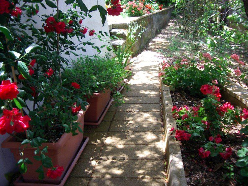 Garten Mietobjekt Villa 54358 Capo d'Orlando