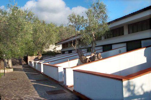 Ansicht des Objektes Mietobjekt Appartement 86319 Palinuro