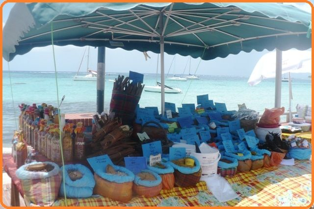 Nahaufnahme Mietobjekt Ferienunterkunft auf dem Land 71841 Sainte Anne (Guadeloupe)