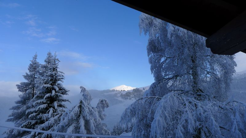 Ausblick aus der Ferienunterkunft Mietobjekt Chalet 104727 Les Gets