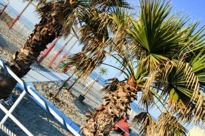 Mietobjekt Fremdenzimmer 109717 Bellaria Igea Marina