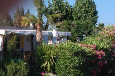 Mietobjekt Mobil-Home 107754 Saint Tropez