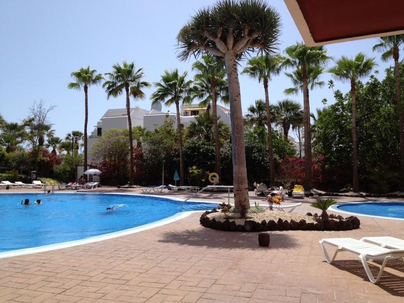 Schwimmbad Mietobjekt Studio 70234 Playa de las Américas