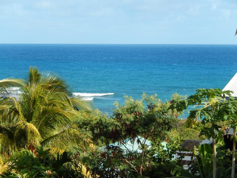 Ausblick von der Terrasse Mietobjekt Appartement 82066 Saint Francois