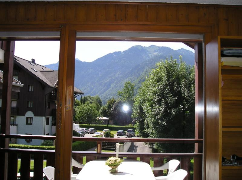 Ausblick aus der Ferienunterkunft Mietobjekt Studio 26470 Samoëns