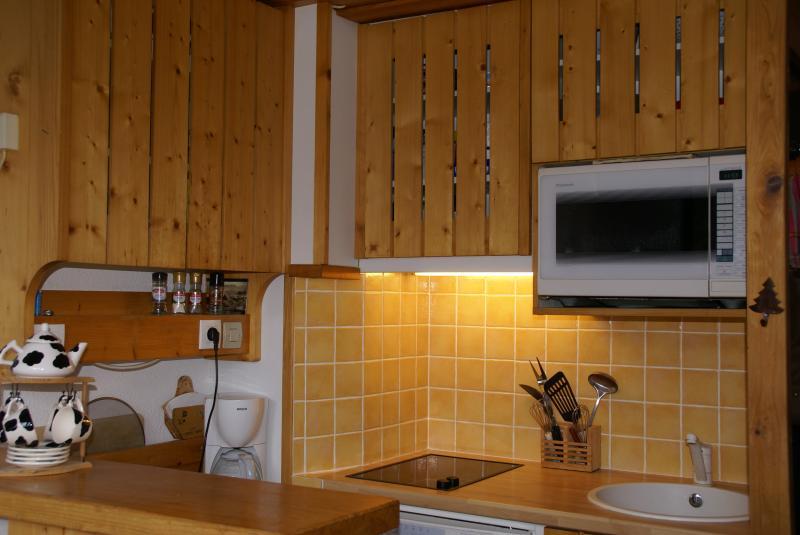 offene Küche Mietobjekt Appartement 330 Les Arcs