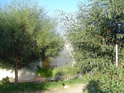 Ansicht des Objektes Mietobjekt Haus 39104 Essaouira