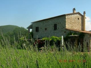 Ansicht des Objektes Mietobjekt Ferienunterkunft auf dem Land 43659 Castellina Marittima