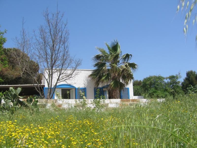 Mietobjekt Haus 45348 Pescoluse