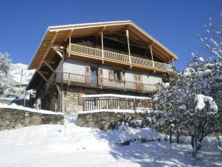 Ansicht des Objektes Mietobjekt Chalet 4903 Chamonix Mont-Blanc