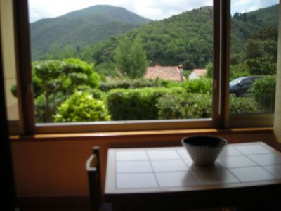 Ausblick aus der Ferienunterkunft Mietobjekt Studio 56172 Amélie-Les-Bains