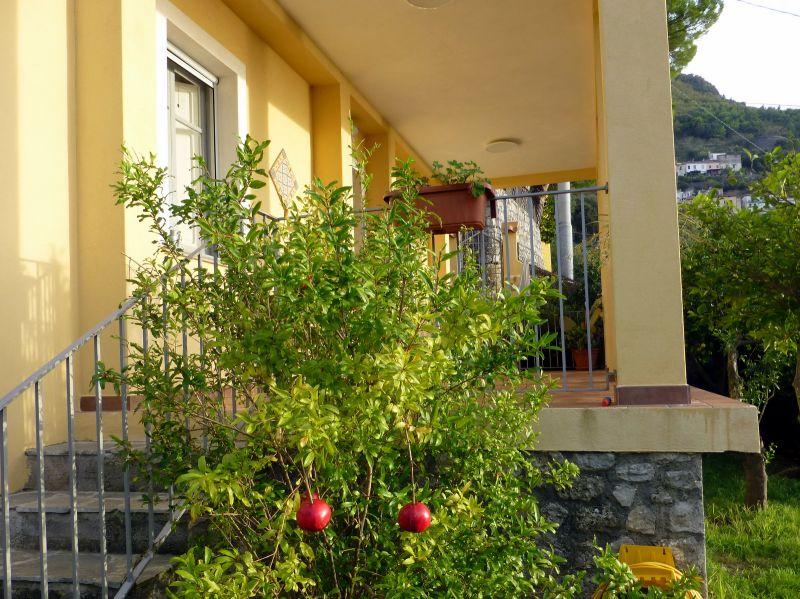 Ansicht des Objektes Mietobjekt Appartement 56238 Maratea