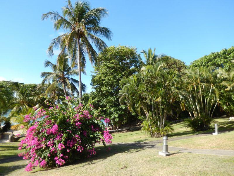 Garten Mietobjekt Appartement 90989 Saint Francois
