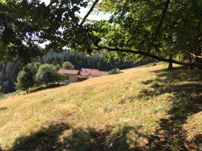 Mietobjekt Ferienunterkunft auf dem Land 99393 Gérardmer