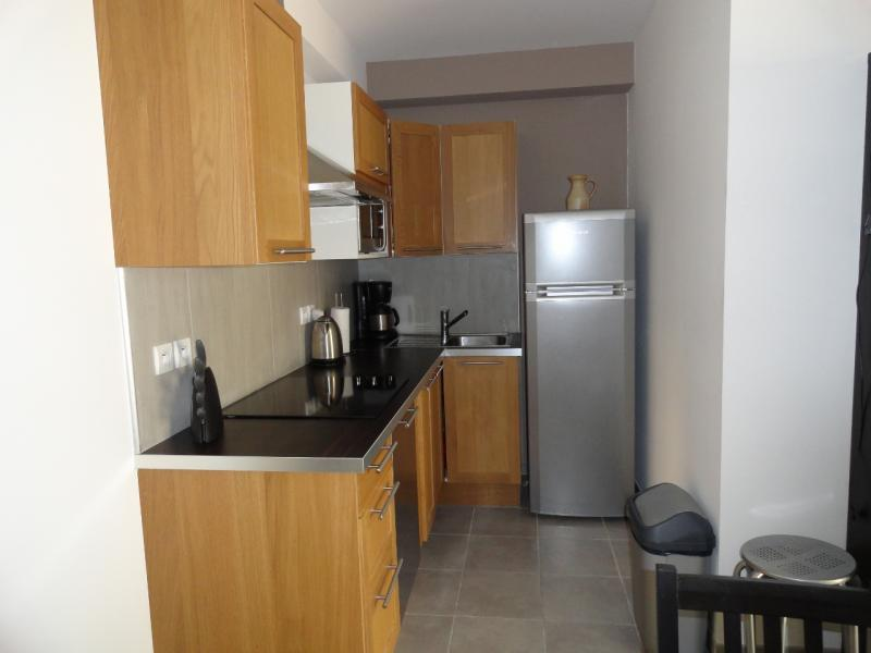 offene Küche Mietobjekt Appartement 69807 Le Grau du Roi