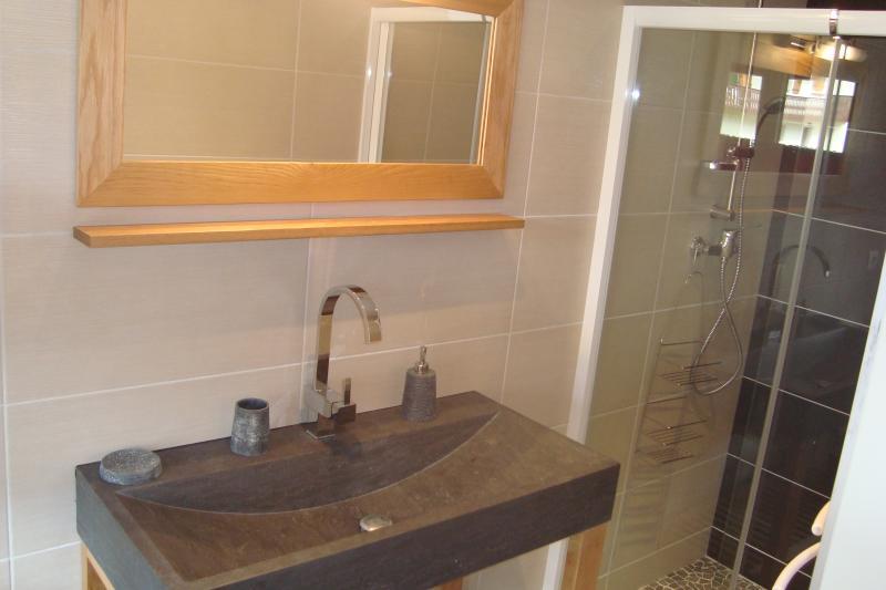 Badezimmer Mietobjekt Appartement 77709 Bellevaux Hirmentaz La Chèvrerie