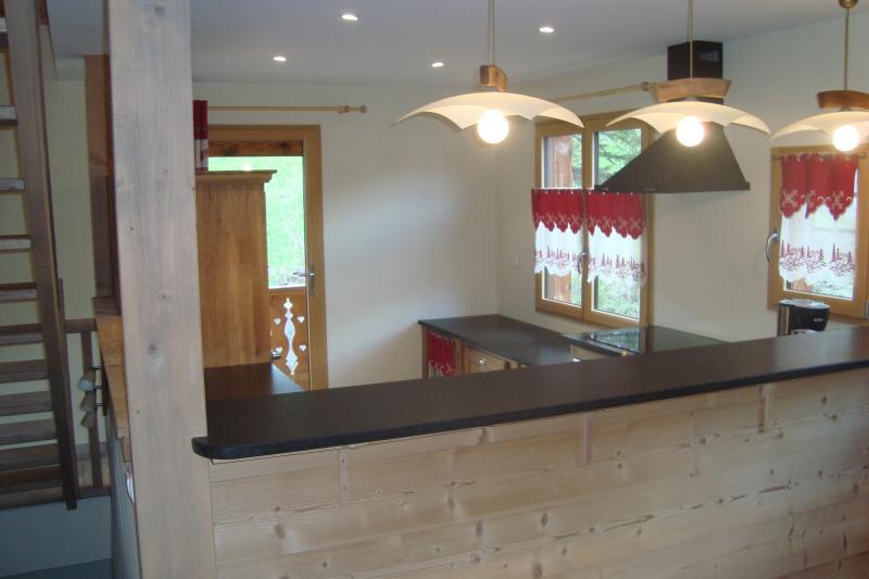 offene Küche Mietobjekt Appartement 77709 Bellevaux Hirmentaz La Chèvrerie