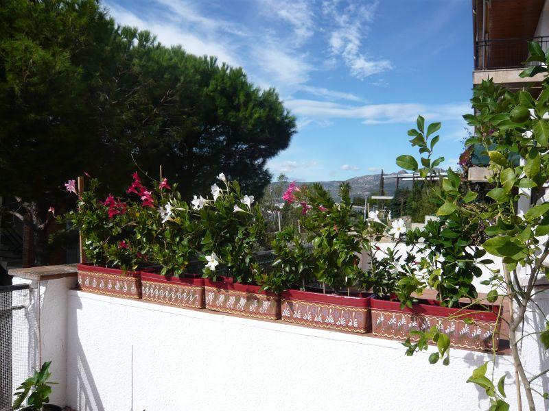 Ausblick von der Terrasse Mietobjekt Appartement 108266 Rosas
