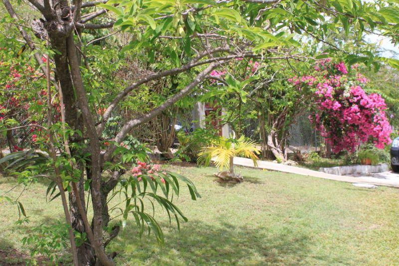 Garten Mietobjekt Studio 106679 Gosier (Guadeloupe)