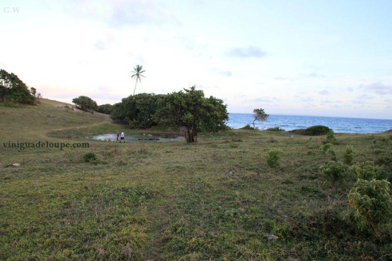 Mietobjekt Studio 106679 Gosier (Guadeloupe)