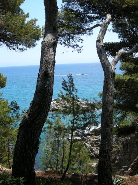 Ausblick von der Terrasse Mietobjekt Appartement 98168 Sant Antoni de Calonge