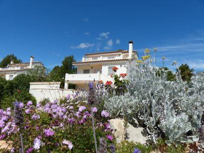 Mietobjekt Villa 116276 L'Ampolla