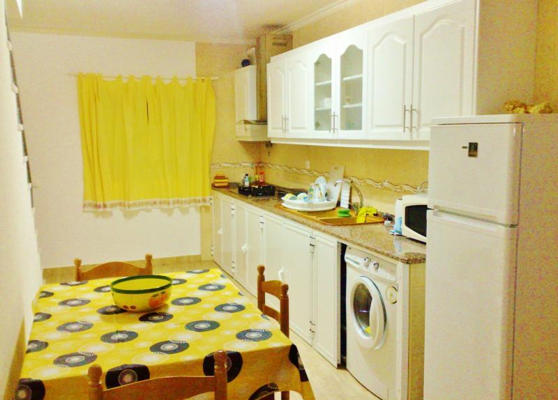 offene Küche 1 Mietobjekt Appartement 69506