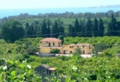 Ansicht des Objektes Mietobjekt Appartement 81186 Fiumefreddo di Sicilia