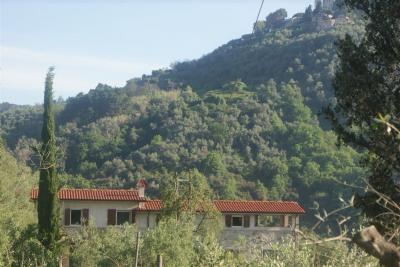 Nahaufnahme Mietobjekt Ferienunterkunft auf dem Land 98512 Viareggio