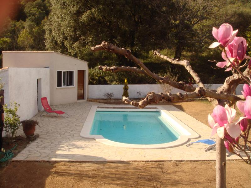 Schwimmbad Mietobjekt Ferienunterkunft auf dem Land 69702 Uzès