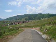 Ferienwohnung in Riquewihr für 2 bis 4 Personen