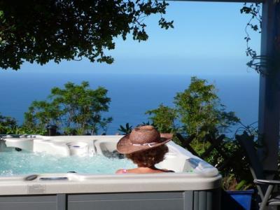 Ausblick von der Terrasse Mietobjekt Villa 84364 Saint Leu