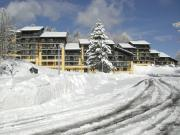 Einraumwohnung in Les Carroz d'Araches f�r 4 Personen