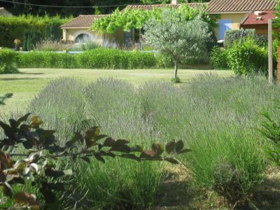 Garten Mietobjekt Villa 92129 Cavaillon
